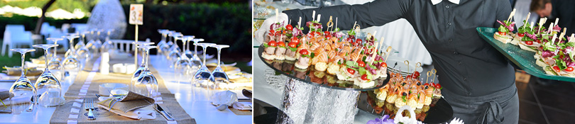 Hors D'oeuvres Menu - Elite Catering - Metro Detroit Caterer Services - apps1